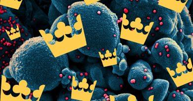 Как работи шведския коронавирус модел