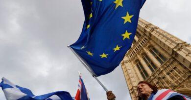 Британци вземат европейско гражданство